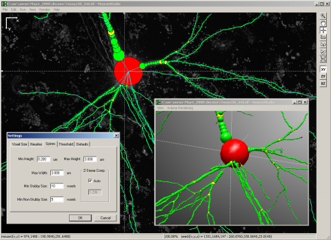 NeuronStudio_standaloneapp_window_overview