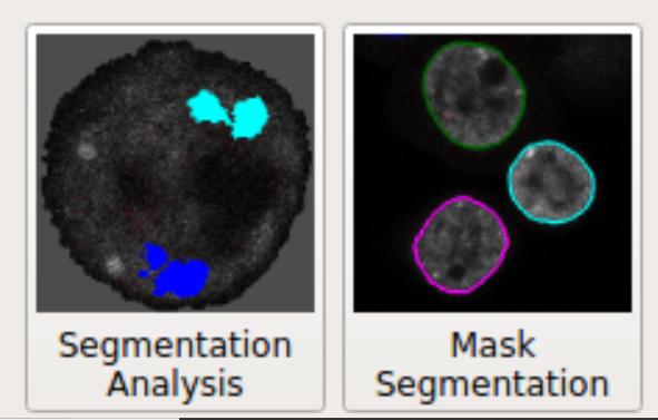 Interactive segmentation | BISE